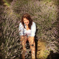 Sarah_Harwood_Lavender_Fields